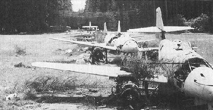 Luftwaffe 46 et autres projets de l'axe à toutes les échelles(Bf 109 G10 erla luft46). - Page 19 AUS-forest